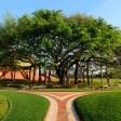 Rupantar - Hindi Bhajan on Sri Aurobindo and The Mother by Physical Education Department